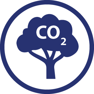 CO2 stored