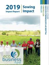 eco.business fund report 2019